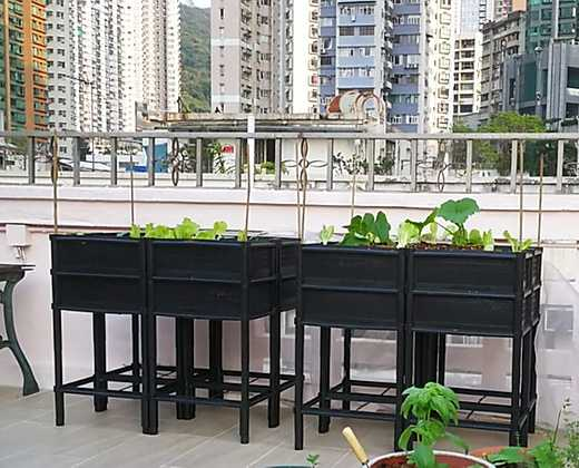 Raised Garden Bed Grow Kit | 高架式種植箱套裝