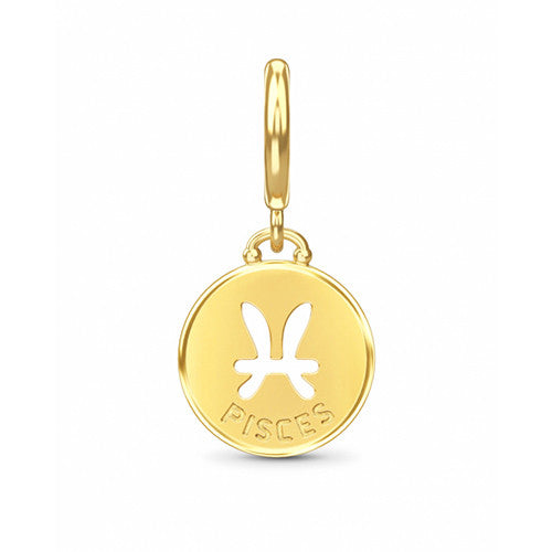 ENDLESS SILVER GOLD PLATED PISCES ZODIAC COIN CHARM