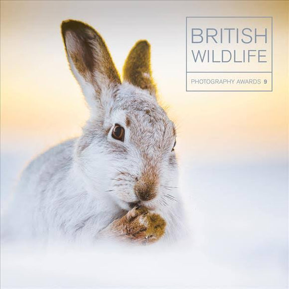 BRITISH WILDLIFE PHOTO AWARDS 9