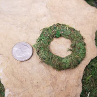 Moss Nest - Wicked Winglings