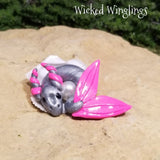 Elko - Hand Sculpted Mini Polymer Clay Sea Dragon in Shell - Wicked Winglings