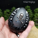 Medium Pirate Dragon Egg - Wicked Winglings