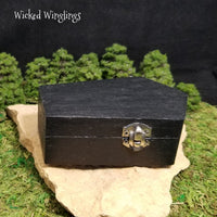 Drac, Vlad and Lilith - Hand Sculpted Polymer Clay Baby Vampire Dragons in Coffin - Wicked Winglings