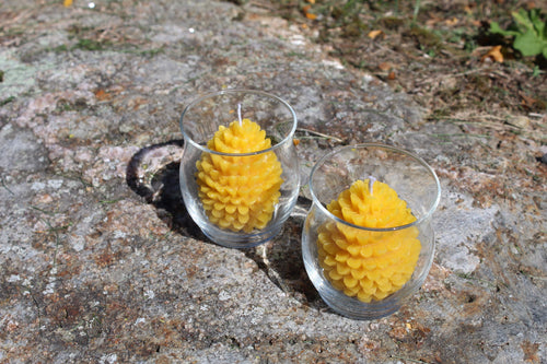 Pure Beeswax Pinecone Votive Candles