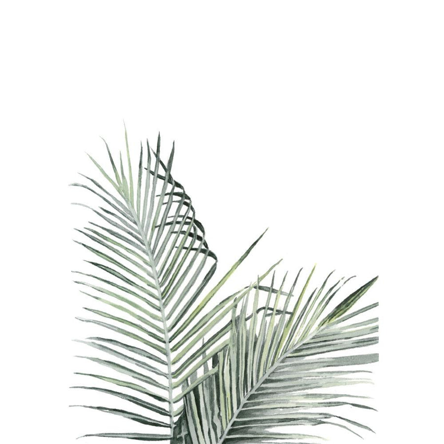 A3 Watercolour Print - Palmera
