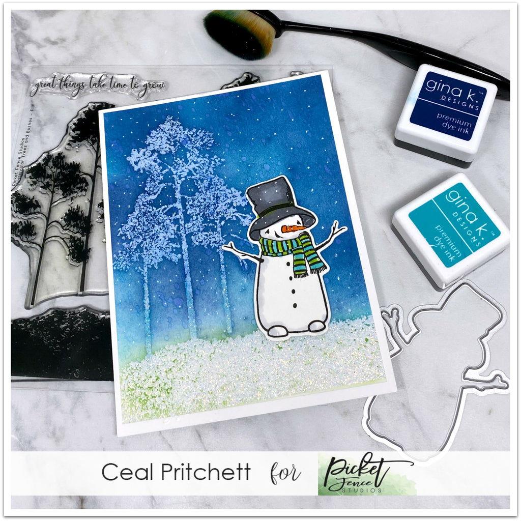 Winter Blues with Ceal Pritchett