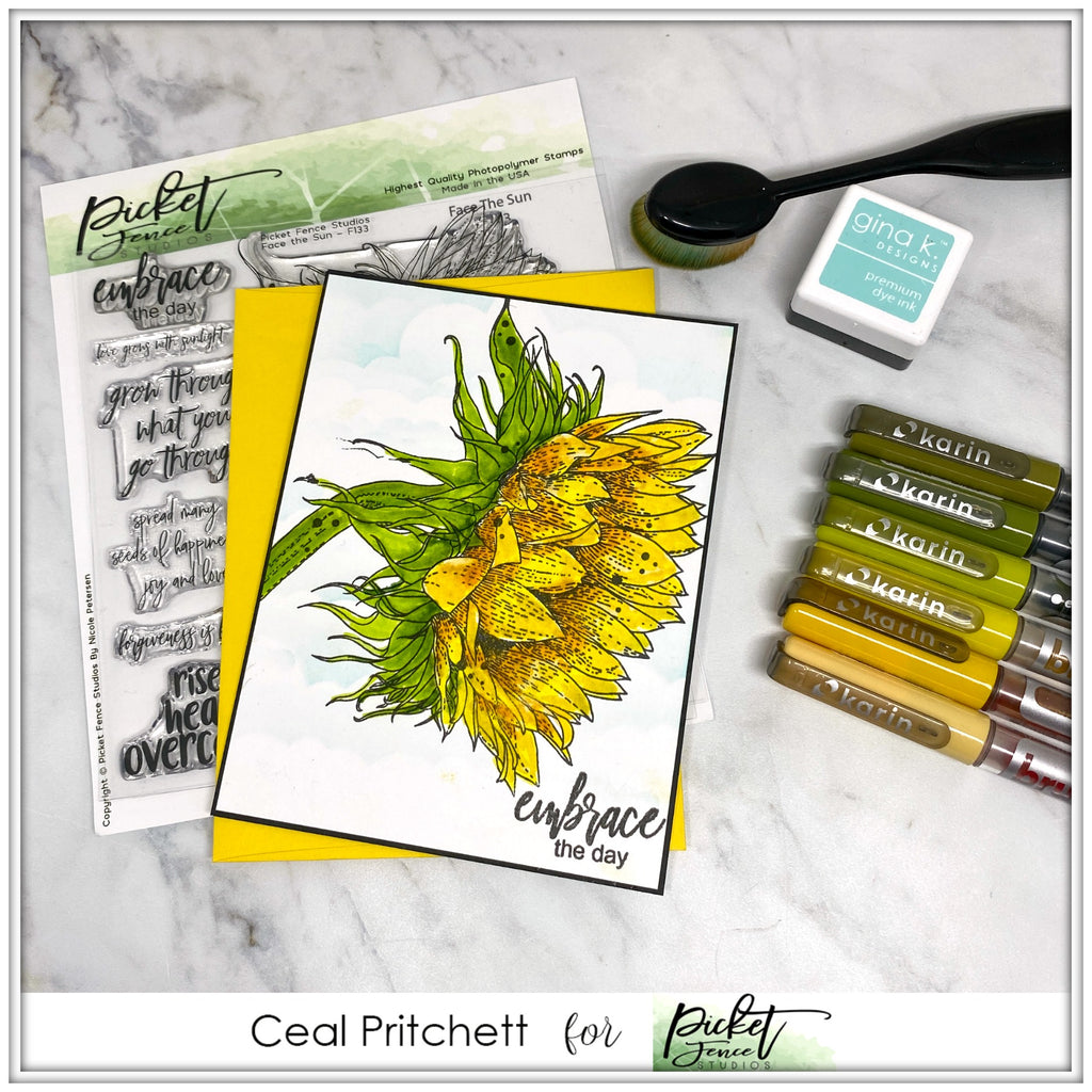 Face The Sun with Ceal Pritchett