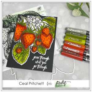 Grow Through What You Go Through with Ceal Pritchett