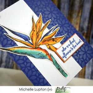 Strelitzia card by Michelle