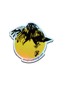Thunderbird Holographic Vinyl Sticker **LIMITED EDITION**
