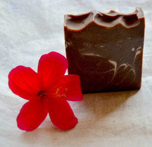 Cold Processed Soap (Chocolate & Coconut Milk)