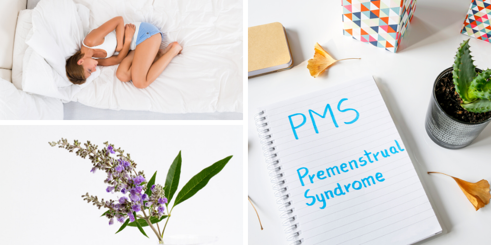 PMS Symptoms and the Vitex Berry Plant