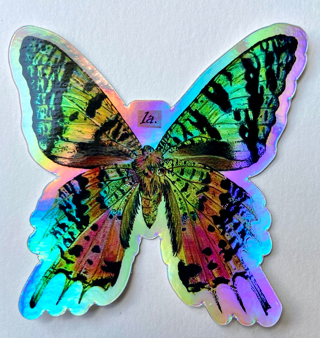 Holographic Sunset Moth Sticker