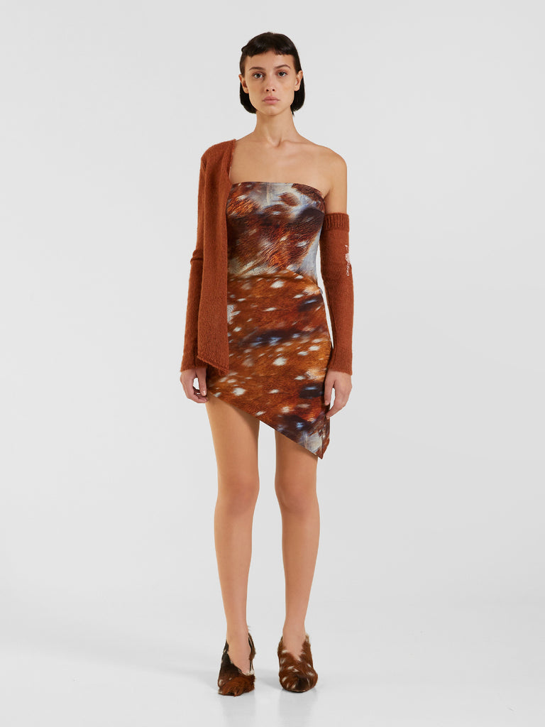 Prion Dress