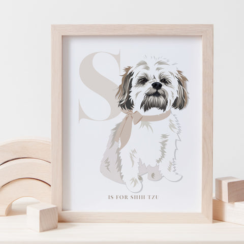 Alphabet Dog Breed - S is for Shih Tzu - WHITE AND BROWN