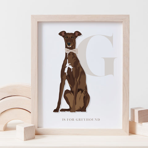 Alphabet Dog Breed - G is for Greyhound