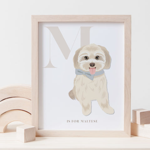 Alphabet Dog Breed - M is for Maltese - CREAM