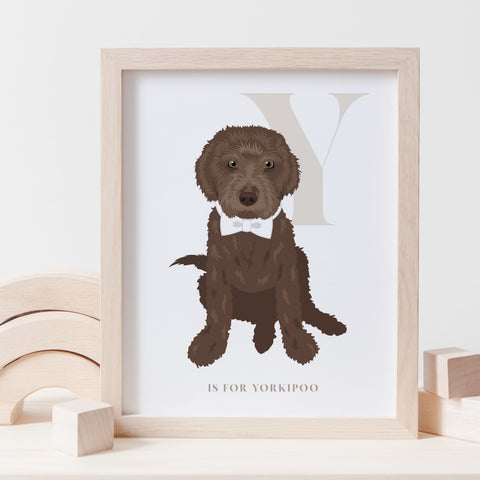 Alphabet Dog Breed - Y is for Yorkipoo