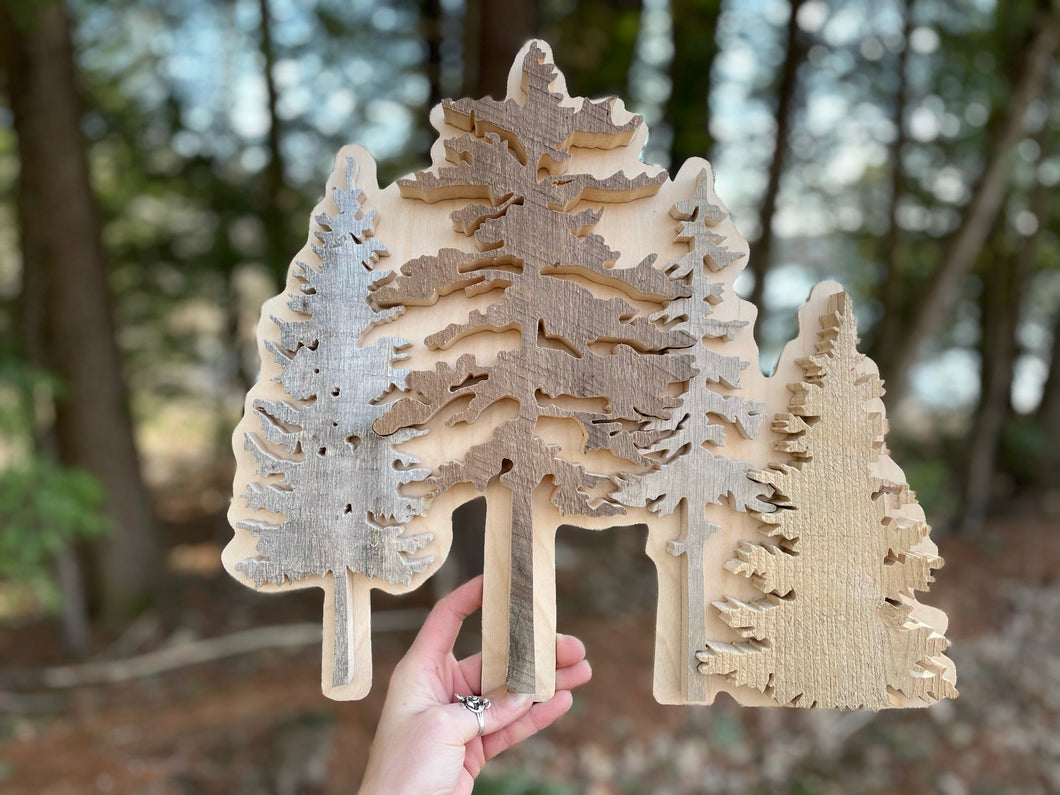 Reclaimed Wood Maine Conifer Trees