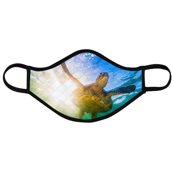 Turtle Masks (2 Designs Pack)