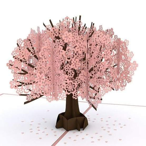 3D Handmade Cherry Blossom Pop Up Card For Your Loved Ones Online @ Best Price in Pakistan