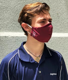 50 Pack of Personal Protection Masks Size LG (Clearance) - Dynasty Athletics