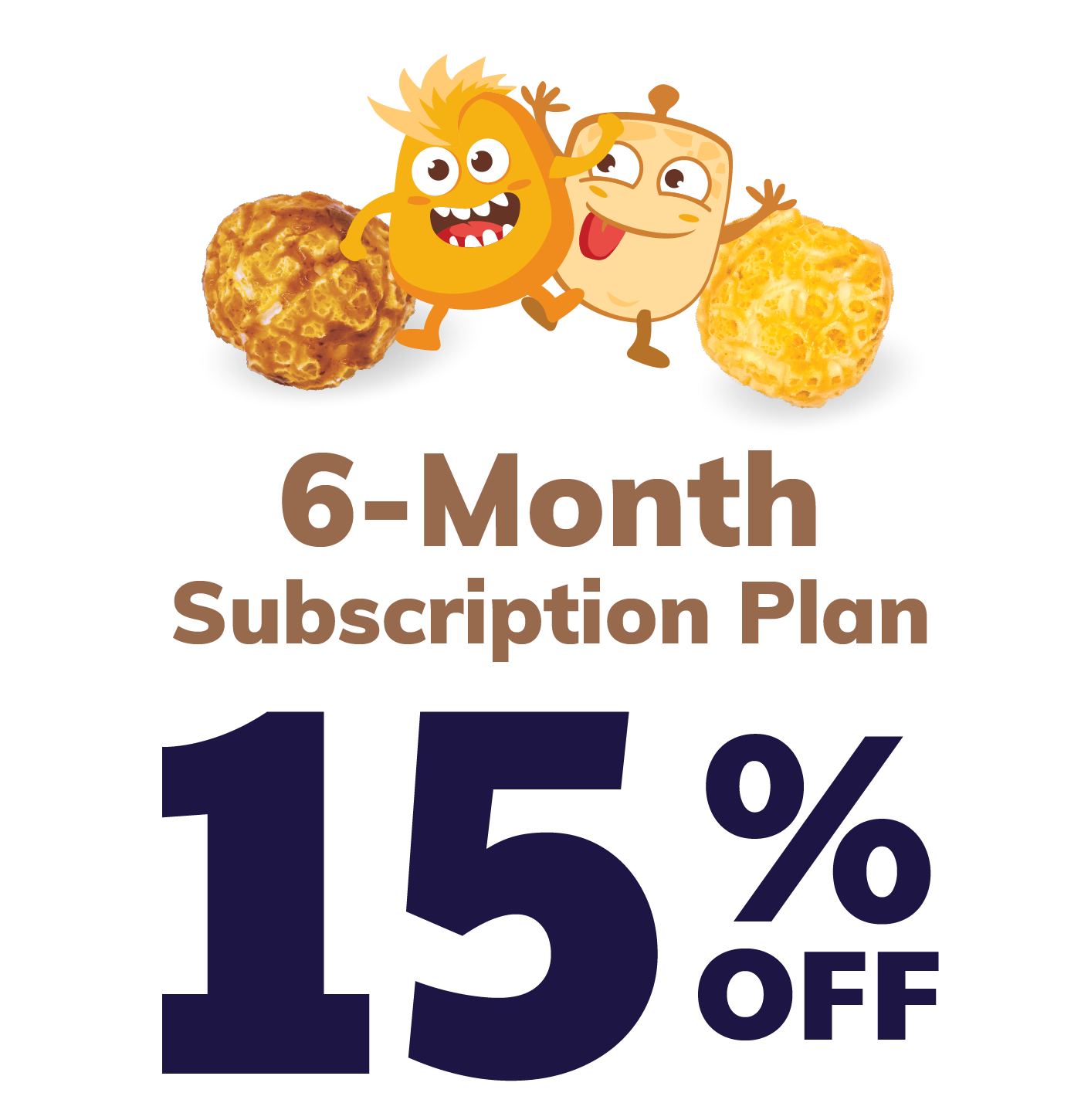 6-Month Subscription Plan
