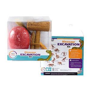 Dinosaur Excavation Kit