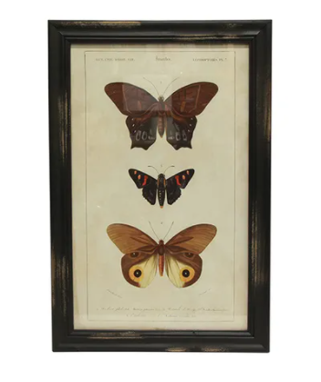 Wall Art - Butterfly Version A