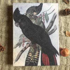 Hand Made Paperless Notebook - A4 Black Parrot