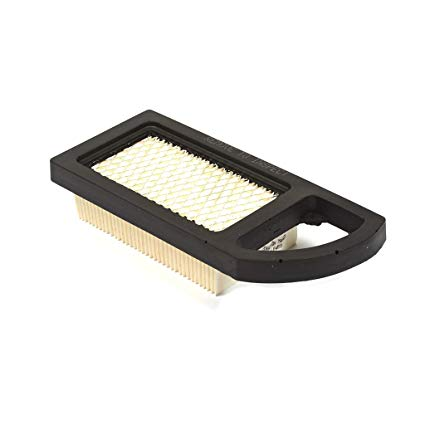 Briggs and Stratton Genuine Air Filter 794421