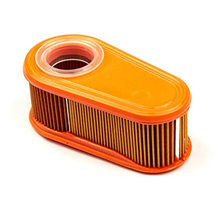 Briggs & Stratton GENUINE Air Filter Combo 795066