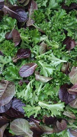 Farmer's Choice Salad Mix