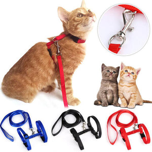 Cat Collar Leash Cat Adjustable Harness Collar Nylon Leash Cat Lead Safety Walking Rope Pet Supply Cat Dog Pet Accessories