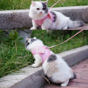 Adorable Comfort Pet Cat Harness Safety Walking Cat Vest Harness With Matching Lead Leash Angel Wings Lace Peals Design 20QS2