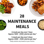 Freestyle Challenge | Meals to Maintain