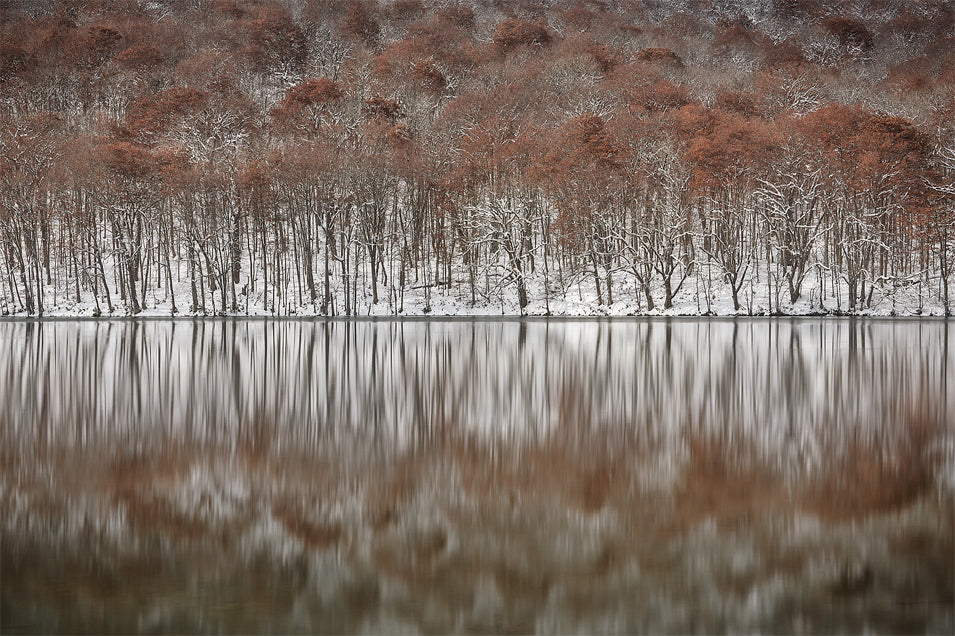 First snow - Masashi Takada Photography