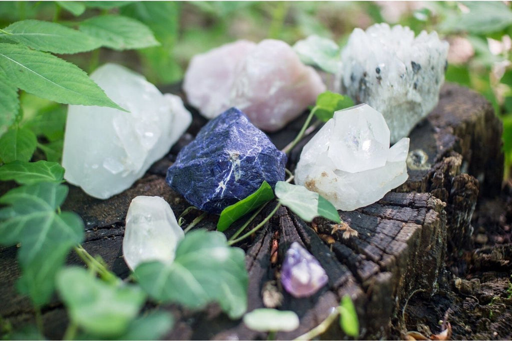rose quartz and other crystals with plants