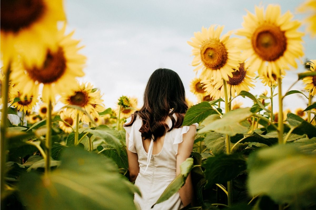 woman walking through sunflowers