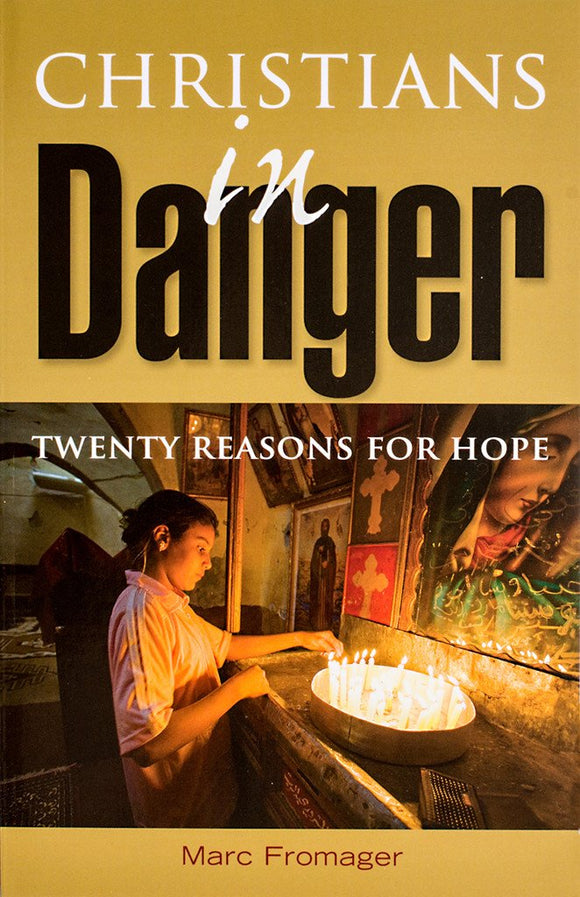 Christians in Danger: Twenty Reasons for Hope - Scepter Publishers