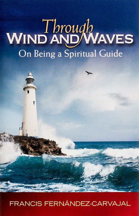 Through Wind and Waves: On Being a Spiritual Guide - Scepter Publishers