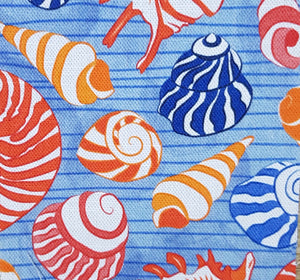 Sea shells by Erica Walt Design