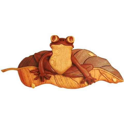 Friendly Frog Intarsia Pattern