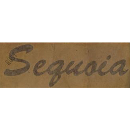 Decal Sequoia