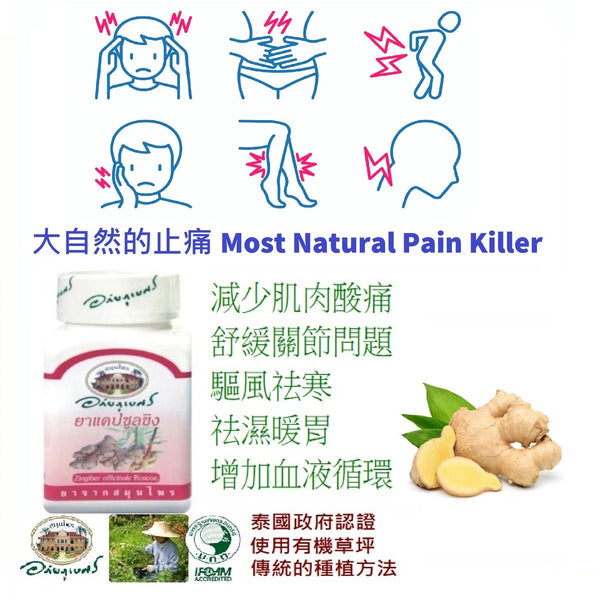 (Hi-Intens) Organic Ginger 60s (Reduce Muscle Soreness soothe Joints Problem)