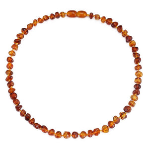 Natural Baltic Amber Teething Necklace/Bracelet - Bird and Bee Naturals