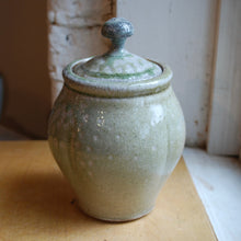 Load image into Gallery viewer, Soda-Fired Ash Drip Jar