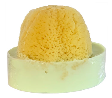 Key Lime Soap with Embedded Sea Sponge