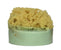 Cucmber Melon Soap with Embedded Sea Sponge
