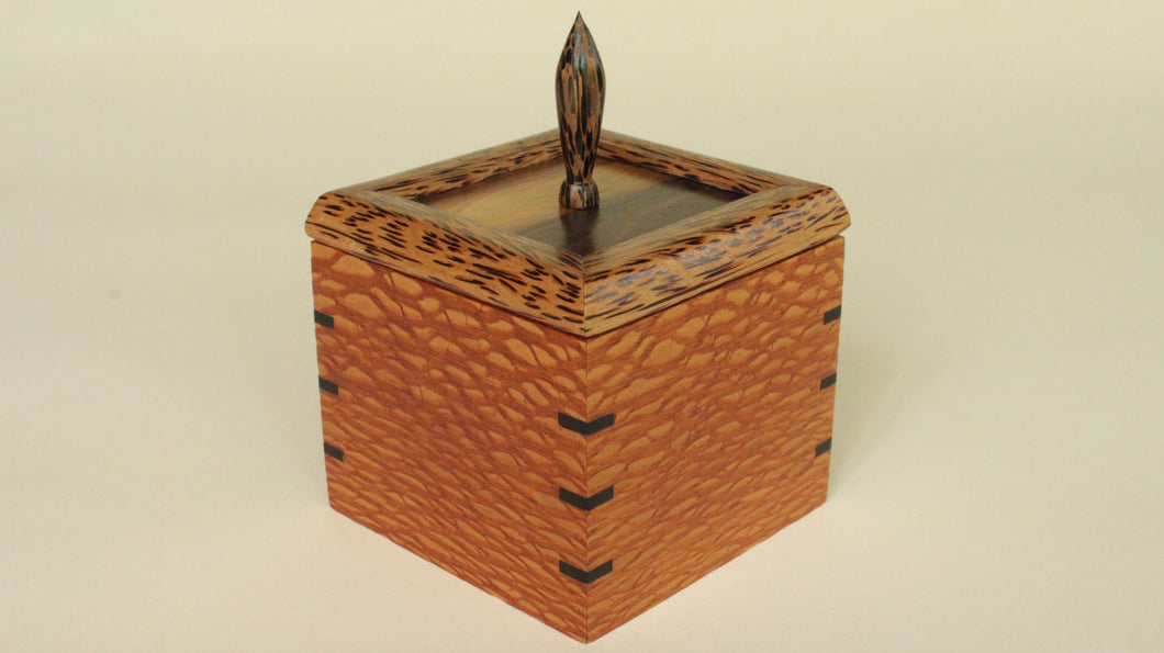 Lacewood-Box with Ebony Splines, Gum panel with Black Palm Frame